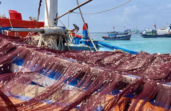 """Những thợ săn"""" tiền ở vùng biển: Thu về hàng trăm triệu trong 1-2h-2"""