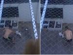 Nụ hôn từ biệt của cụ già và chú chó nhỏ: Câu chuyện không ai cầm được nước mắt giữa phố Sài Gòn-8