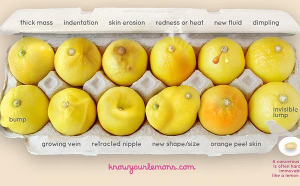Nhờ vào bức ảnh 12 quả chanh, người phụ nữ bất ngờ phát hiện bị ung thư vú-2