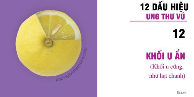 Nhờ vào bức ảnh 12 quả chanh, người phụ nữ bất ngờ phát hiện bị ung thư vú-13