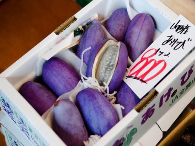 Nho Nhật siêu đắt 300.000 đồng/quả bán tại Việt Nam có gì đặc biệt?-1