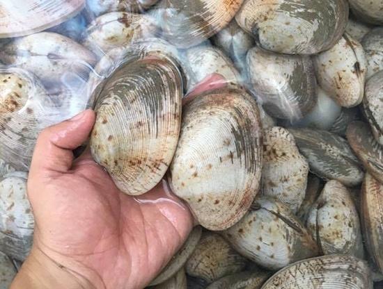 Làm sạch và khử hết mùi hôi của lòng heo, thịt cá chỉ nhờ những mẹo vặt cực đơn giản-5