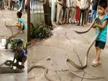 Bé trai 3 tuổi chơi với rắn khổng lồ dài 3m như thú cưng