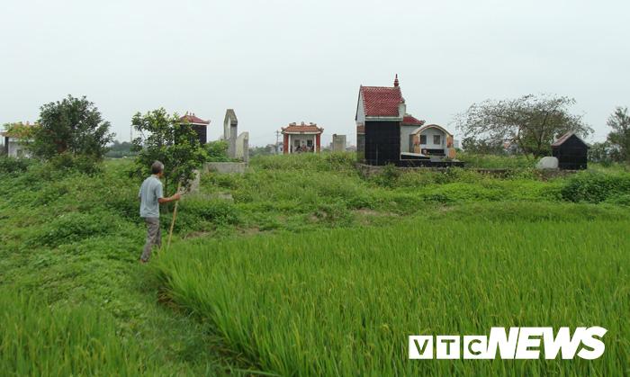 Thoải mái tàn phá nghĩa địa mộ cổ khổng lồ chứa cả tấn báu vật ở Hải Dương-8