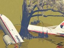 Phát hiện mới trong rừng rậm Campuchia: Bí ẩn máy bay MH370 sắp được sáng tỏ?