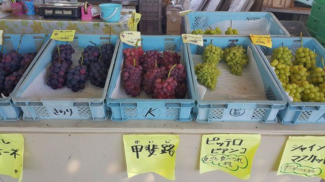 Nước Nhật bình yên tới mức cảnh sát sẵn sàng đi điều tra vụ mất trộm 1 quả nho-1