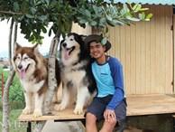 9X nuôi loài chó Tây to xác để khách chụp ảnh và thu trăm triệu/tháng