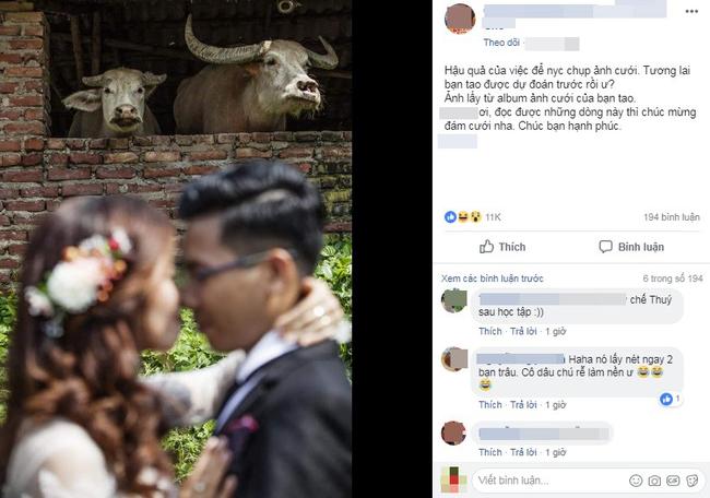 """Bức ảnh cưới đầy những chiếc sừng của người thợ ảnh thâm nho"""", chụp cô dâu mà nhìn vào chỉ thấy trâu-1"""