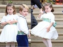Đi đám cưới cô họ, Công chúa Charlotte tiếp tục