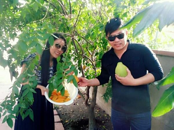 Soi nhà Quang Lê tại Mỹ: Nhìn bên ngoài tưởng miệt vườn vào trong mới biết là cung điện-10