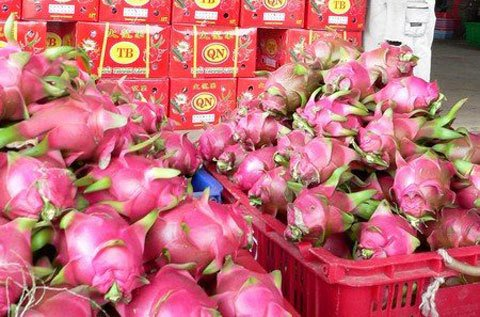 Trung Quốc thuê đất Lào, Campuchia sản xuất: Thế mạnh Việt Nam lao đao-2