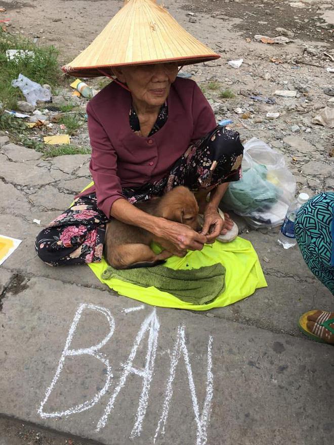 Nụ hôn từ biệt của cụ già và chú chó nhỏ: Câu chuyện không ai cầm được nước mắt giữa phố Sài Gòn-1