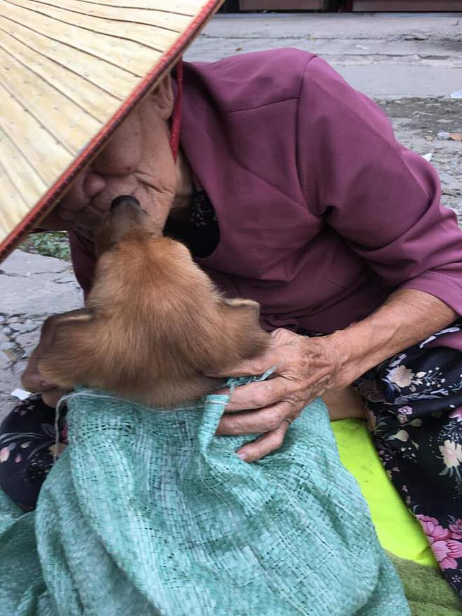 Nụ hôn từ biệt của cụ già và chú chó nhỏ: Câu chuyện không ai cầm được nước mắt giữa phố Sài Gòn-4
