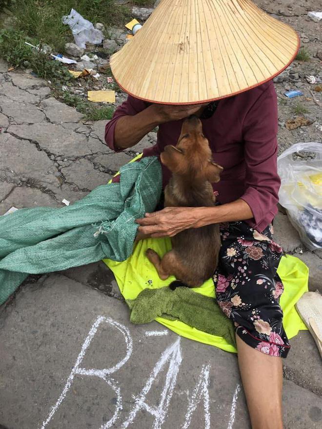 Nụ hôn từ biệt của cụ già và chú chó nhỏ: Câu chuyện không ai cầm được nước mắt giữa phố Sài Gòn-5
