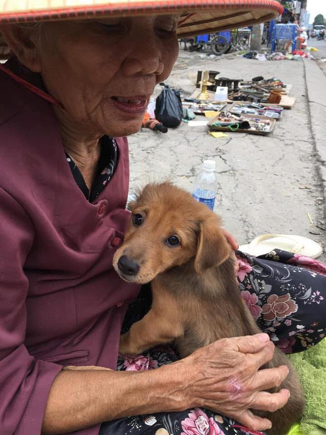 Nụ hôn từ biệt của cụ già và chú chó nhỏ: Câu chuyện không ai cầm được nước mắt giữa phố Sài Gòn-6