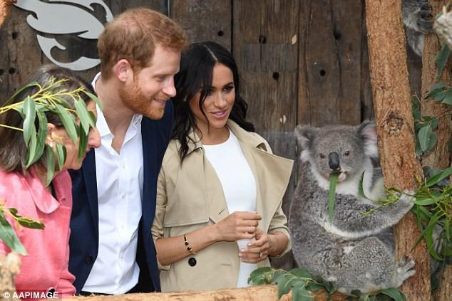 Hoàng tử Harry bất ngờ mắng người hâm mộ khi họ làm điều này với người vợ đang mang thai của anh-7