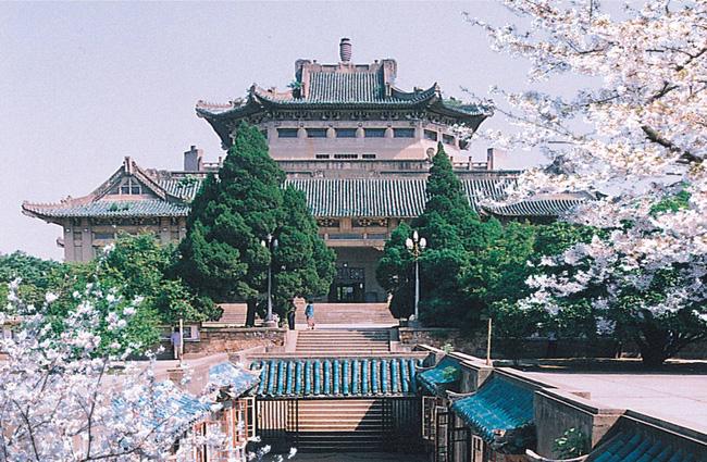 Mê mệt với vẻ đẹp tựa tranh vẽ của ngôi trường được mệnh danh là Đại học hoa anh đào ở Trung Quốc-2