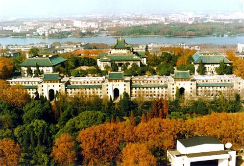 Mê mệt với vẻ đẹp tựa tranh vẽ của ngôi trường được mệnh danh là Đại học hoa anh đào ở Trung Quốc-6