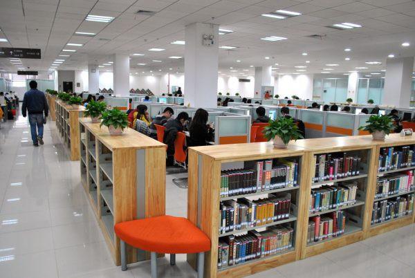 Mê mệt với vẻ đẹp tựa tranh vẽ của ngôi trường được mệnh danh là Đại học hoa anh đào ở Trung Quốc-8