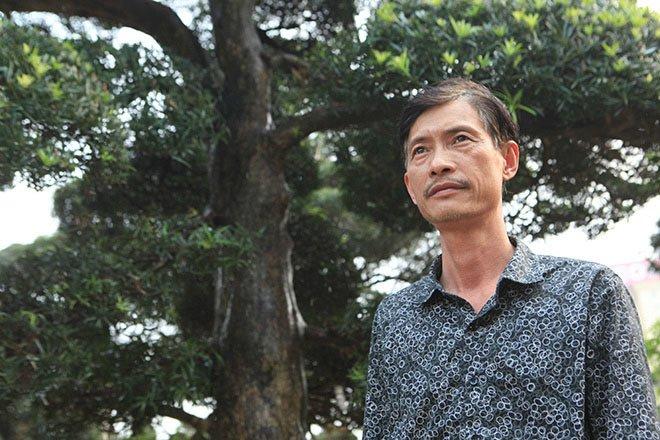 Vườn tùng la hán Nhật nghìn tỷ ở Hà Nội: Mỗi cây giá cả tỷ đồng-4
