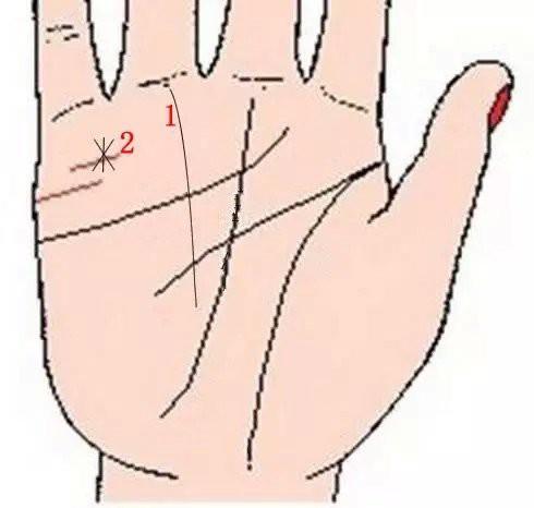 Lòng bàn tay có 8 vị trí phú quý, chỉ cần sở hữu ít nhất 1 cái thì cả đời ăn sung mặc sướng-1