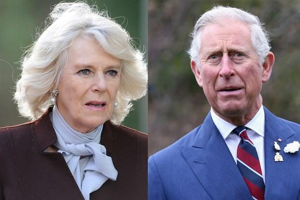 Người hâm mộ chấn động trước tin con trai chung bí mật giữa Thái tử Charles và bà Camilla đòi nhận lại cha mẹ-2