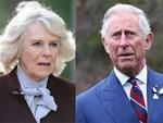 Hết giải quyết vụ bà Camilla, Hoàng gia Anh tiếp tục bị bố Meghan đòi quyền lợi với yêu cầu không thể sốc hơn-3
