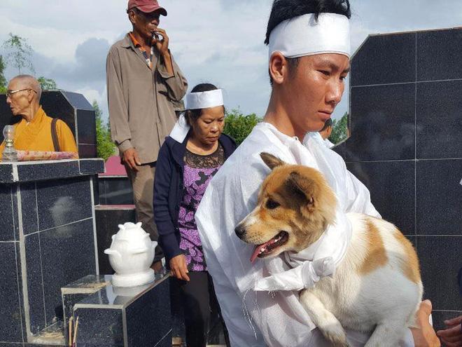 Câu chuyện uất hận về chú chó đang để tang bà chủ thì bị cẩu tặc bắt mất-1