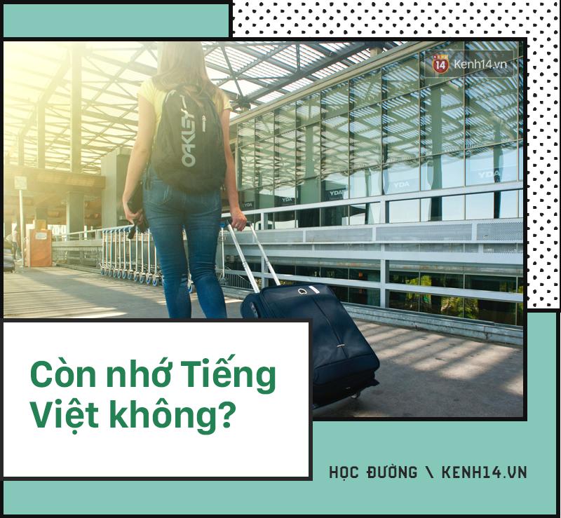 Du học sinh về nước bị hỏi những câu kém sang đến nực cười: Còn nhớ Tiếng Việt không? Thành Việt kiều rồi nhỉ?-1