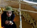 Cụ bà vô đối Việt Nam: Luyện tằm tự dệt chăn tơ, bắt cọng sen nhả lụa-5