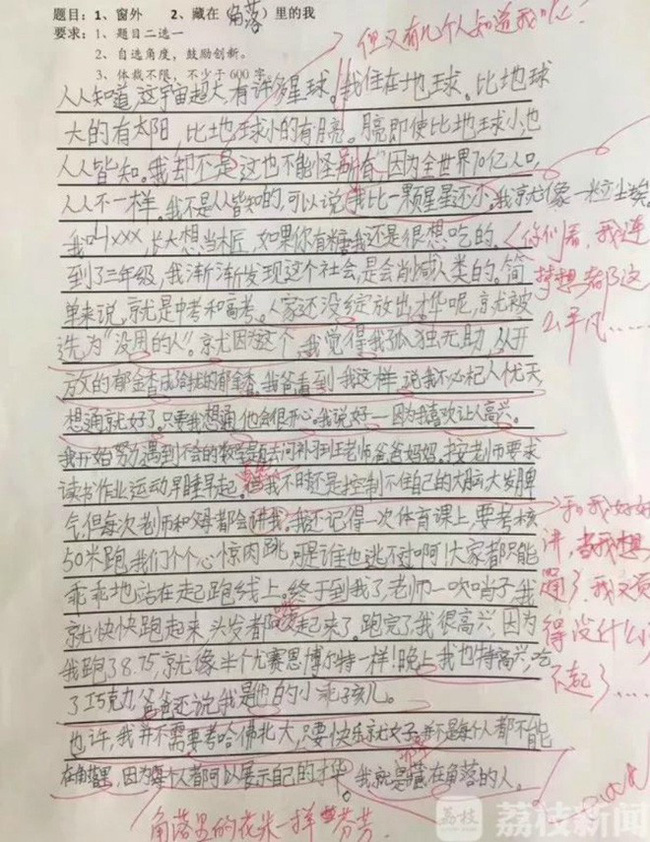 Cô bé lớp 5 gây sốt với bài văn: Không cần học cật lực, chỉ cần sống hạnh phúc-2