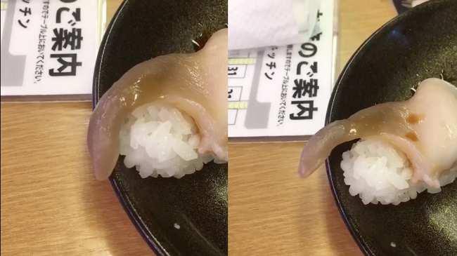 Nhà hàng Nhật Bản phục vụ sushi vẫn còn ngọ nguậy chơi đùa với thực khách làm dân mạng phát khiếp-1