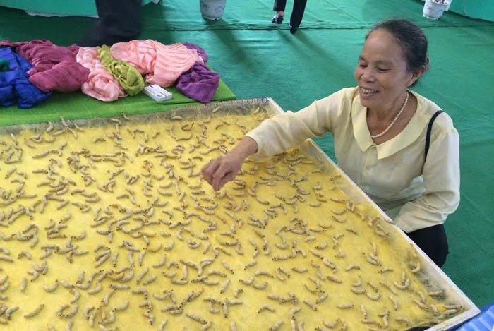 Cụ bà vô đối Việt Nam: Luyện tằm tự dệt chăn tơ, bắt cọng sen nhả lụa-1