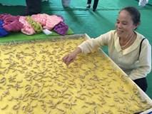 Cụ bà vô đối Việt Nam: Luyện tằm tự dệt chăn tơ, bắt cọng sen 'nhả' lụa