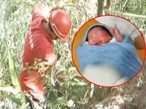 Ông bố nhẫn tâm ném con gái mới sinh được 6 tiếng xuống vách đá, biết được lý do người ta lại càng căm phẫn