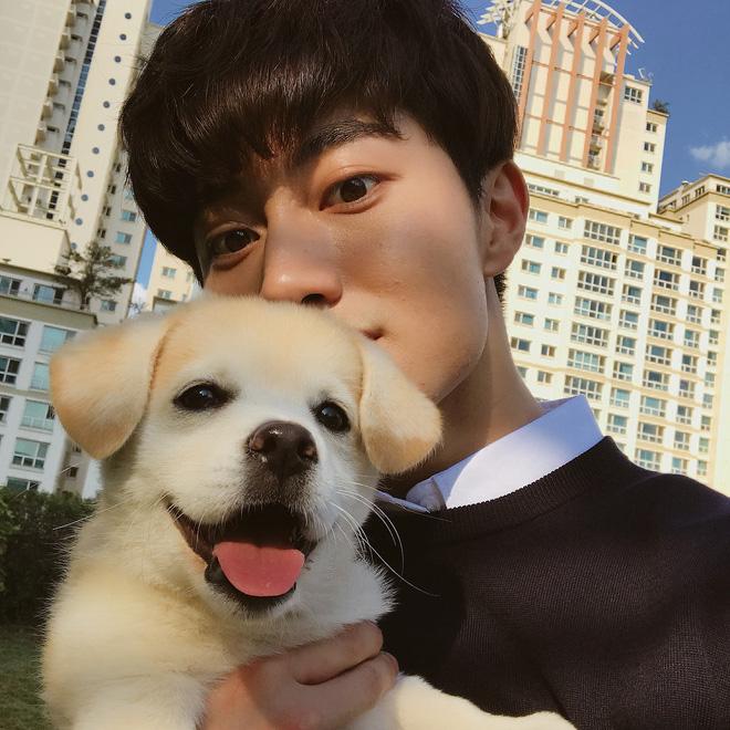Ngôi sao mới MXH Hàn Quốc: Từ chú cún bị bỏ rơi trở thành boss quốc dân, được lên cả đài SBS mới oách-4