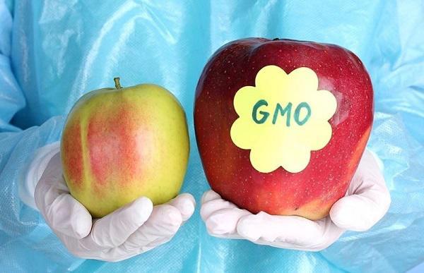 Tuyệt đối đừng mua trái cây có mã code bắt đầu bằng số này, kẻo mang bệnh cho cả nhà-3