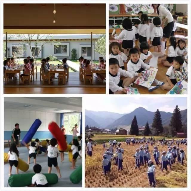 Mẫu giáo Nhật Bản dạy trẻ thế này! Cha mẹ Việt đọc xong chỉ biết thở dài: Ao ước-4