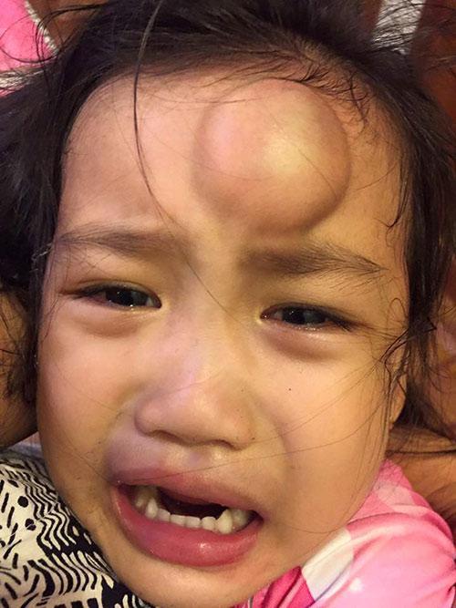 Những lần sao Việt bức xúc, xót xa vì con gặp tai nạn, thương nhất là con Ốc Thanh Vân-6