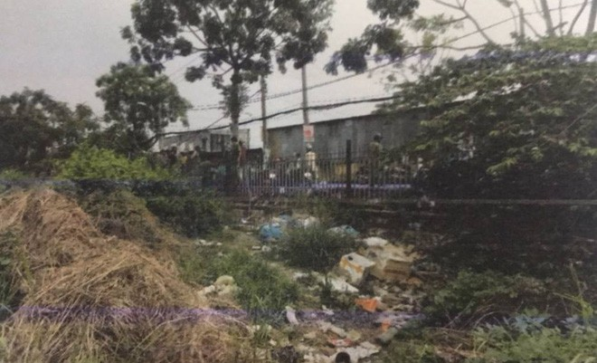 Công an kêu gọi tìm kiếm nhân chứng vụ thi thể trẻ sơ sinh bị heo rừng tha đi ở Sài Gòn-1