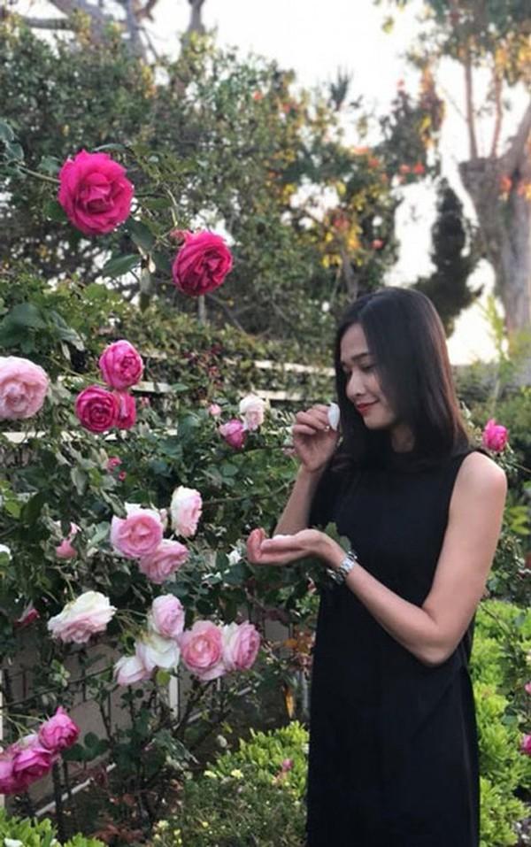 Cuộc sống sang chảnh của hoa hậu Dương Mỹ Linh sau hơn 1 năm chia tay Bằng Kiều-6