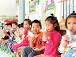 Học sinh Hà Nội bắt đầu uống Sữa học đường từ đầu năm 2019-2