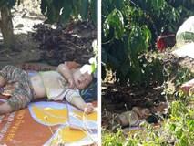 Hình ảnh cậu bé bụ bẫm nằm ngủ dưới gốc cây cà phê khi theo bố mẹ lên rẫy