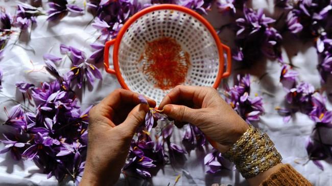 Bí mật thú vị của saffron - gia vị đắt nhất thế giới gần 1 tỷ/kg từng được Nữ hoàng Ai Cập dùng dưỡng nhan-6
