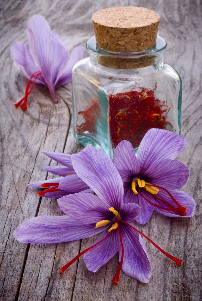 Bí mật thú vị của saffron - gia vị đắt nhất thế giới gần 1 tỷ/kg từng được Nữ hoàng Ai Cập dùng dưỡng nhan-8