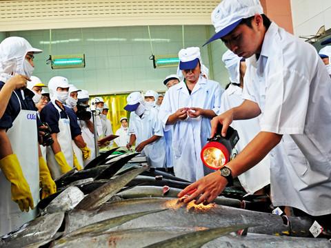 Doanh nghiệp kêu cứu vì container hải sản bị tắc ở cảng suốt nửa tháng-2