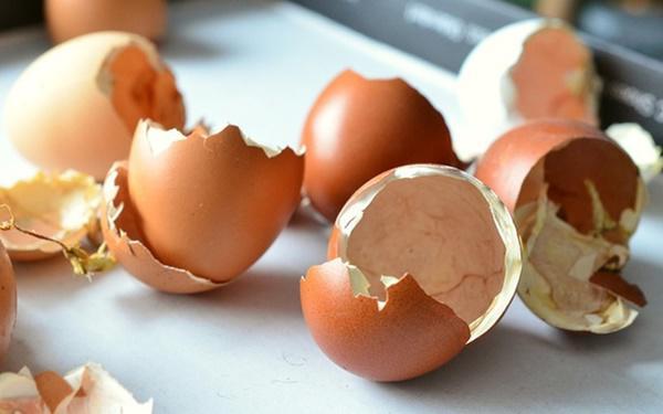 Đánh bay toàn bộ vết bẩn, làm sắc lưỡi dao máy xay trong 30s nhờ vỏ trứng gà-1