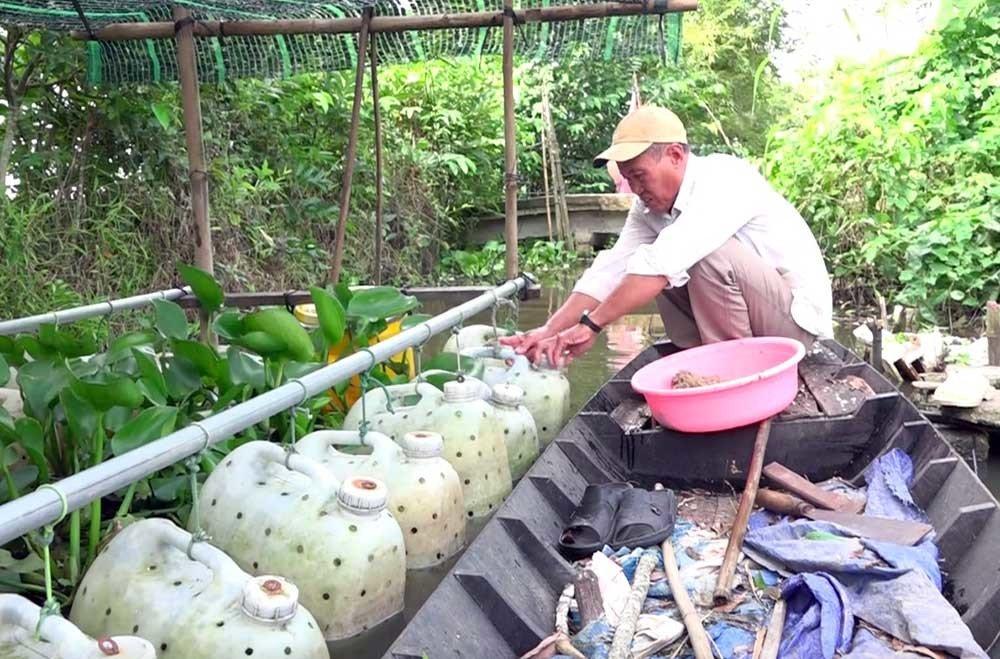 Chuyện lạ miền Tây: Phát hãi ngàn con lươn lúc nhúc trong cái can nhựa-3