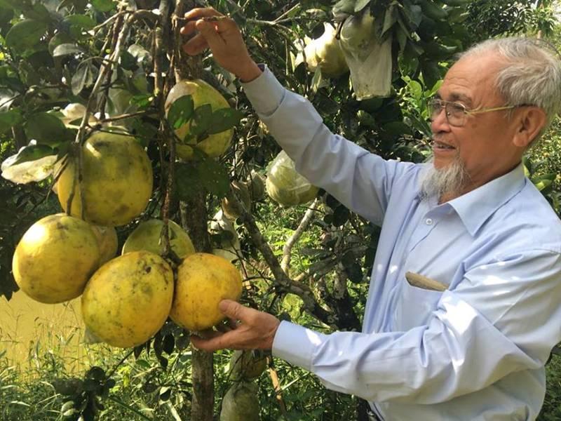 """Tiên ông và trang trại 5 trong 1"""" có tài ghép cây ra nhiều loại quả-1"""