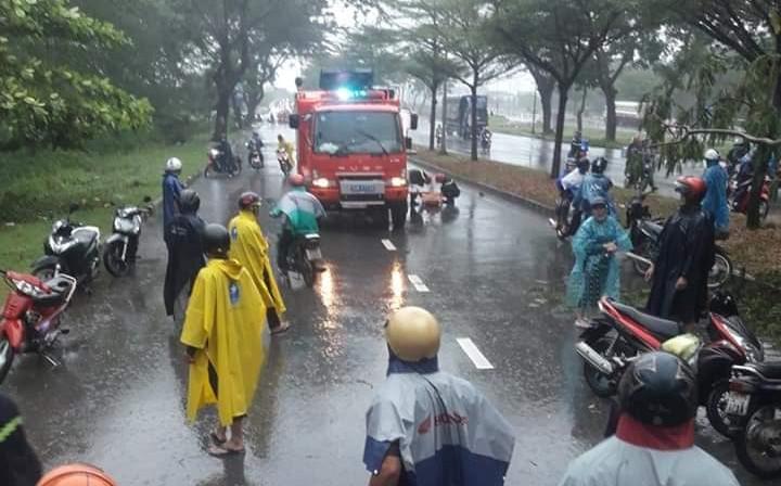 Bão số 9 khiến cây xanh ở Sài Gòn bật gốc đè chết một người đàn ông chạy xe máy trên đường-1